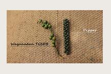 K BY TYNDIS Organic Wayanadan TGSEB Black Pepper - 2.png